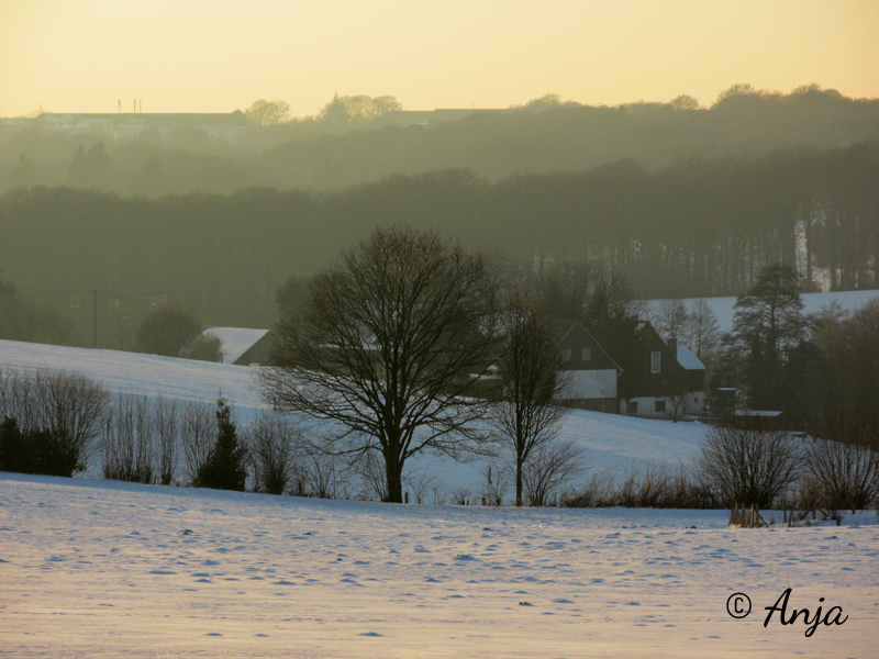 Wintertage in Wuppertal – Januar/Februar 2015